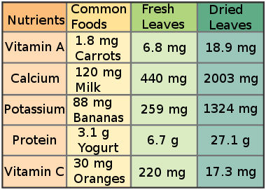 Nutritional Comparison to Common Foods